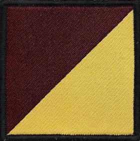 1st Battalion, Royal Regiment of Fusiliers DZ Flash