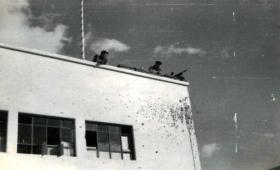 Members of 3 PARA on the rooftop of a school, Suez, 6 November 1956.