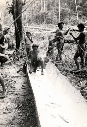 Villagers making a  Kambong, dugout  canoe, Borneo, 1965.