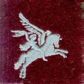 Pte Walter Stevens' Pegasus Patch
