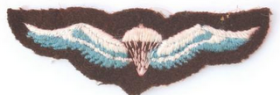South African original wings cloth type, 1964