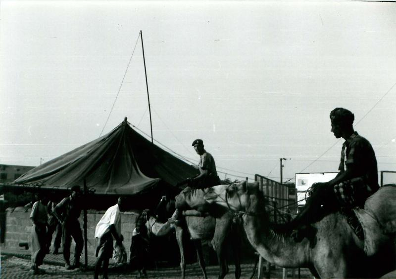 Paratroopers riding camels outside 'Juliet' Road Block, Aden, 1967