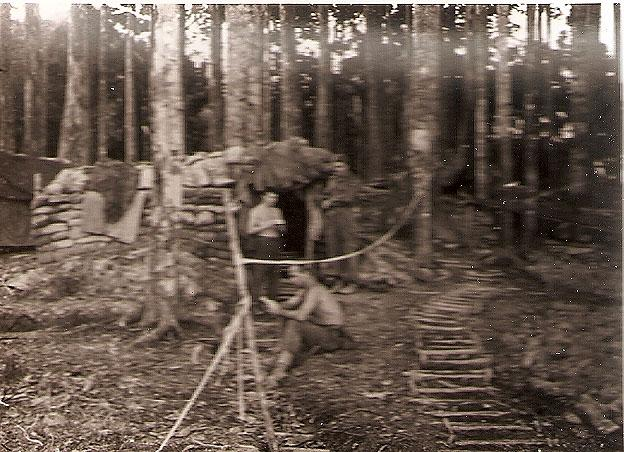 Paratroopers camped in the jungle, Borneo, c.1965