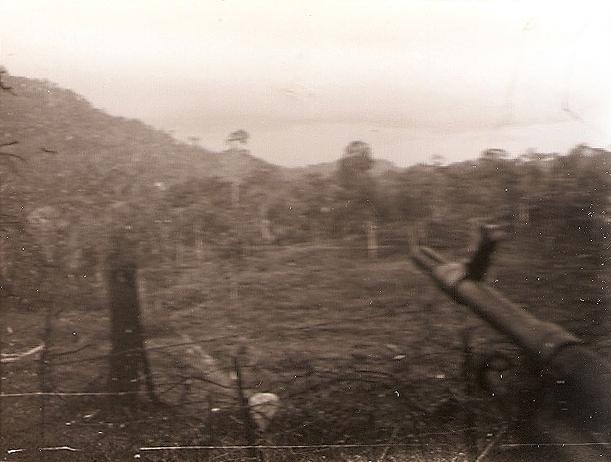 Looking out into the jungle from a paratroopers' gun position, Borneo, c.1965