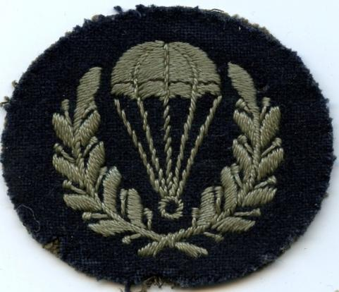 WW2 RAF Parachute Jump Instructor (Until November 1945)